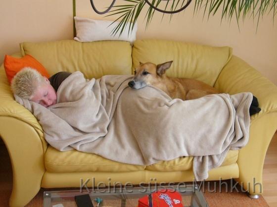 Kleine süsse Muhkuh mit Hundi