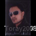 Toray2008