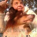 deaf_blue_wölfin