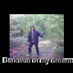 darkwolf_of_my_dreams 2