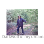 darkwolf_of_my_dreams 2