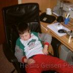 Heidis_geisen_peter 2