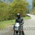 Woelfinnisha2000 1