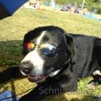 Schnuckelige_35 Herr Schröder